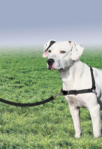 Premier Easy Walk Dog Harness, Medium, Black/Silver