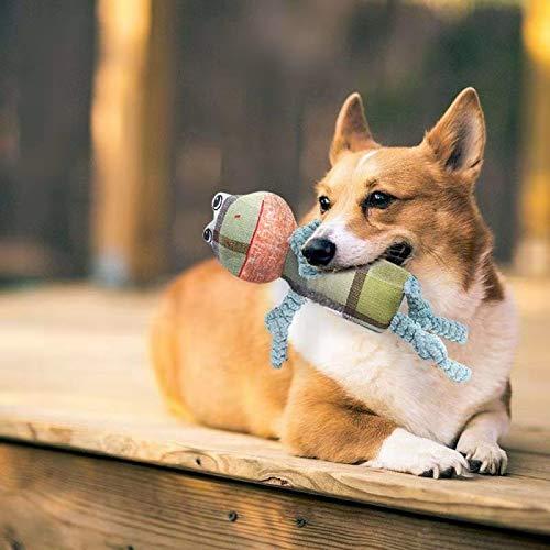 Rana Juguete para Perro de Mascota GingerUP Juguete de Peluche Lindo Juguete de dentici/ón para Perros peque/ños y medianos Juguete Duro para Perro chirriante