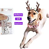 Bolbove Pet Christmas Lace Flower Antler Head Band and Santa Collar for Medium to Large Dogs (Large)