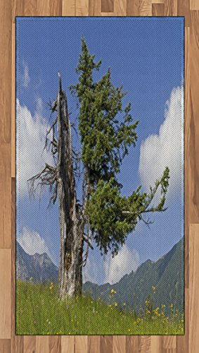 Lunarable Nature Area Rug, Old Spruce Tree Coming Back to Life from Death in Summer Meadow Country Image, Flat Woven Accent Rug for Living Room Bedroom Dining Room, 2.6 x 5 FT, Blue Olive Green (Meadows Spruce Cabin)