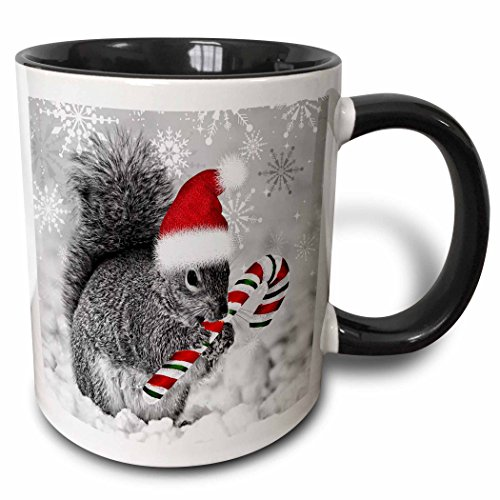(3dRose This Cute Christmas Squirrel Has A Candy Cane and A Santa Hat in The Snow Covered Winter Landscape. Two Tone Black Mug, 11 oz, Black/White)