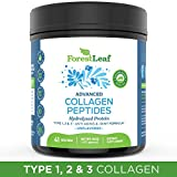 Advanced Hydrolyzed Collagen Peptides (16oz) – Unflavored Protein Powder – Mixes Into Drinks and Food – Pasture Raised, Grass Fed – for Paleo and Keto; Joints and Bones – 41 Servings – by ForestLeaf For Sale