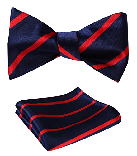 HISDERN SetSense Men's Stripe Jacquard Woven Self Bow Tie Set One Size Navy Blue / Red ()
