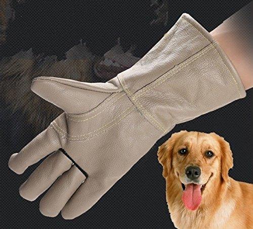 CozyEars Animal Handling Rescuing Home Gardening Anti-bite Grooming Gardening Waterproof Gloves Gauntlet Leather Dog CAT Bird Reptile ()
