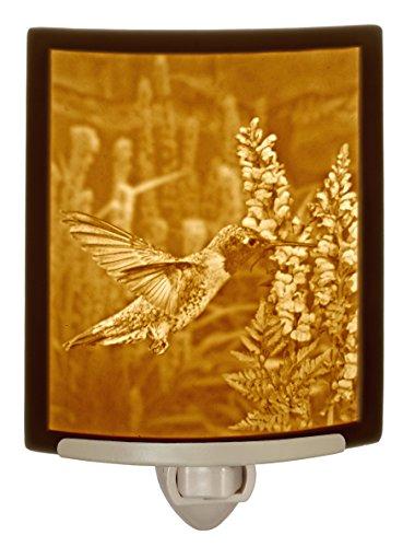 Sweet Nectar Hummingbird Porcelain Curved Lithophane - Lithophane Light Night