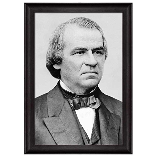Portrait of Andrew Johnson (17th President of the United States) American Presidents Series Framed Art Print