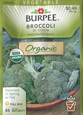 Burpee 69906 Broccoli DeCiccio Organic Seed Packet