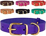 Leather Dog Collar - BronzeDog Classic Basic Handmade Genuine Leather Dog Collar, Hardware Solid Brass Leather Collar for Dogs Small Medium Large Puppy Red Black Brown (Neck Size 11 1/2-15 1/2, Purple)