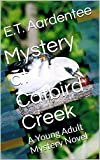 Mystery at Catbird Creek: A Young Adult Mystery Novel