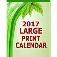 2017 Large Print Calendar: 14 Month Large Print Calendar for the Year 2017. Dated calendar with blank squares to write in for 2017. Starts in December 2016 and ends in January 2018