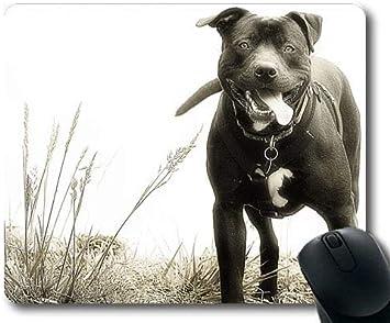 Yanteng Alfombrillas de ratón para Juegos, Perro Pitbull Rottweiler ...