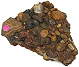 Conglomerate Lapidary Material From Crater Of Diamonds State Park Arkansas