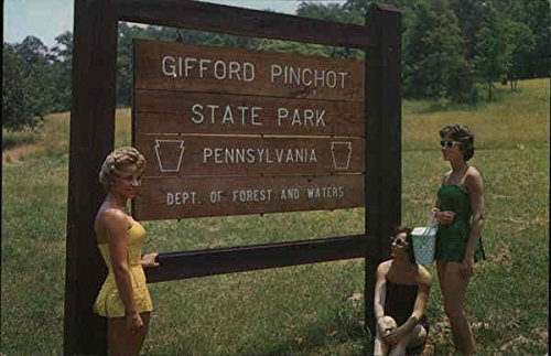 Pinchot Park Lewisberry, Pennsylvania Original Vintage Postcard (Gifford Pennsylvania Pinchot)