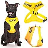 Adopt Me Yellow Color Coded Waterproof Padded Adjustable Non Pull Front and Back Ring Medium Vest Dog Harness Donate To Your Local Charity