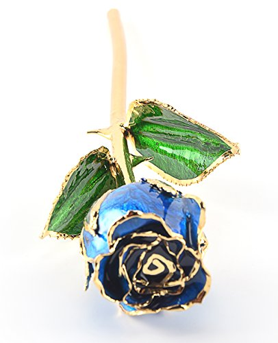 M Dream Long Stem Trimmed 24K Real Rose Dipped in Gold Blue 11 Inches Set of 1,Best Gift for Her, Women, Girlfriends, Wife, Girl, Valentine's Day, Mother's Day, Anniversary, Birthday, Wedding by M Dream (Image #3)