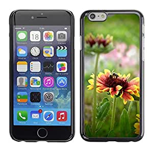 """Hot Style Cell Phone PC Hard Case Cover // M00117456 Flower Process Pollination Colors // Apple iPhone 6 4.7"""""""