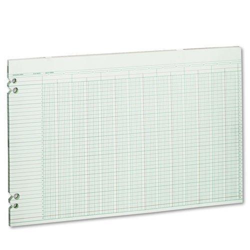 Wilson Jones - Accounting Sheets, 24 Columns, 11 x 17, 100 Loose Sheets/Pack, Green G50-24 (DMi PK by Wilson Jones