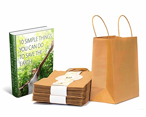 Environment Premium 12pcs Eco-Friendly Brown Paper Bag - 10