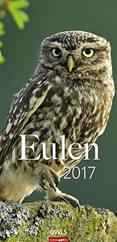Eulen - Kalender 2017