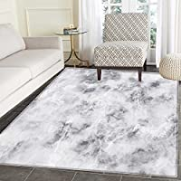 Marble Rug Kid Carpet Granite Surface Pattern with Stormy Details Natural Mineral Formation Print Home Decor Foor Carpe 3x4 Light Grey Dust