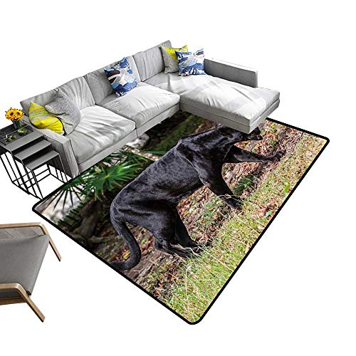(Super Cozy Bathroom Rug Carpet Black Panther Walks Through The Jungle Provides Protection and Cushion for Floors 6' X 9')