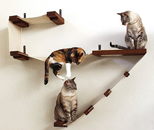 CatastrophiCreations Deluxe Cat Playplace