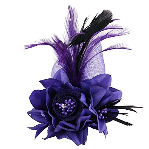 (ACTLATI Charming Mesh Feather Hair Clip Women Girls Hairpin Cocktail Party Flower Barrette Fascinator Hat)
