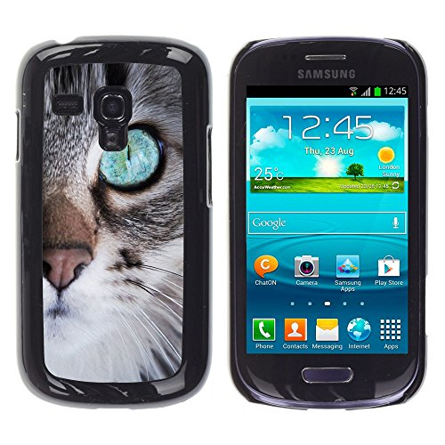 STPlus Gato en una caja Animal Carcasa Funda Rigida Para Samsung Galaxy S3 Mini #9