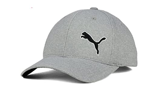 Amazon.com  Puma Combo Span Flexfit Cap Hat Stretch Fit Gray Size L ... 5f6483026e8