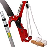A Telescopic Rod with 2 IN 1 Steel Body Pole Tree Trimmer Saw Pruner (1, 6M (Approx. 19.7 ft))