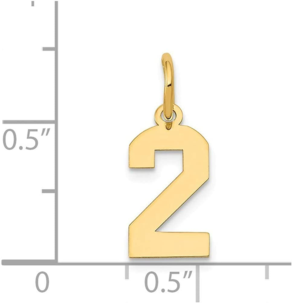 14K Yellow Gold Small Polished Number 2 Charm Pendant from Roy Rose Jewelry