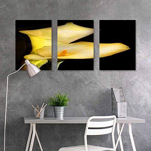 BDDLS Art Oil Painting Sticker Murals,Calla Lily (2) for Living Room,Dinning Room, Bedroom 3 Panels,24x35inchx3pcs