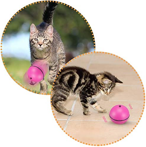 WINGPET Interactive Cat Toy, Electronic Cat Ball Toy with Auto Rolling Randomly, Funny Cat Toys for Kitten Training, Kitten Exercise Tease Toy… 5