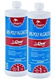 Best Algaecide For Pools - Rx Clear Swimming Pool Algaecide 60 Plus Review