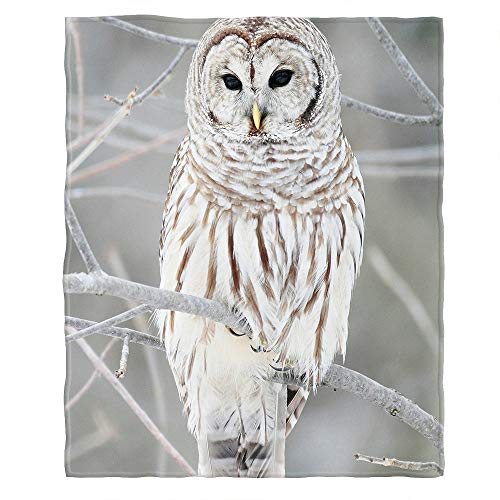 - Moslion Soft Cozy Throw Blanket White Cute Owl Perch On Tree Fuzzy Warm Couch/Bed Blanket for Adult/Youth Polyester 30 X 40 Inches(Home/Travel/Camping Applicable)