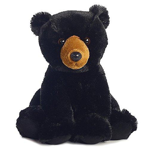 Aurora - Black Bear 14