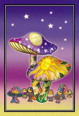Moon Mushrooms - Sun Moon Mushroom - Dan Morris, Set of 2 Mailable POSTCARD for Travel Holiday Invitation Welcome Thank you Cards - 4
