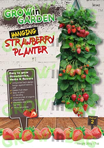 GROWinGARDEN Hanging Strawberry Planter - Pack of Two -