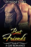 gay best friends gay fiction gay romance first time gay gay erotica
