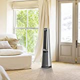 Lasko AC615 Portable Electric Oscillating Stand