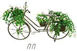 Red Carpet Studio Bronze Bicycle Planter, Large
