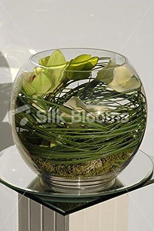 Tacto verdadero Artificial verde de la orquídea y lirio de pecera de: Amazon.es: Hogar