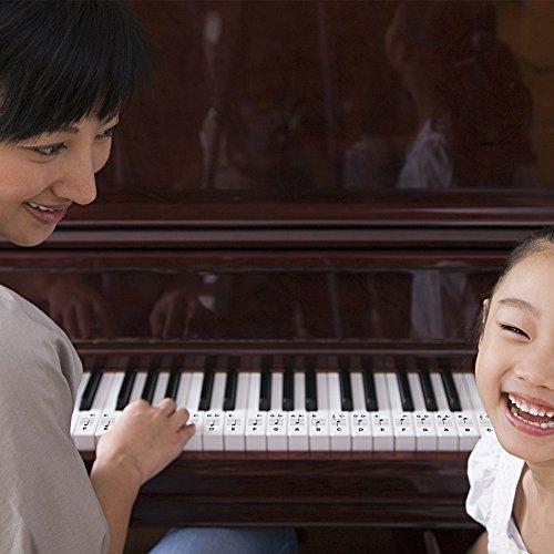 Pegatinas de piano para teclas - Extraíbles con revestimiento de doble capa para teclados 49/61 /76/88