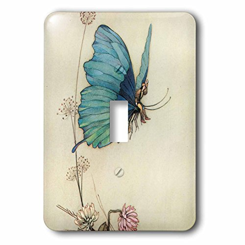 3dRose lsp_110172_1 Fairy in The Garden Vintage Art Light Switch - Rose Covers Switch Light