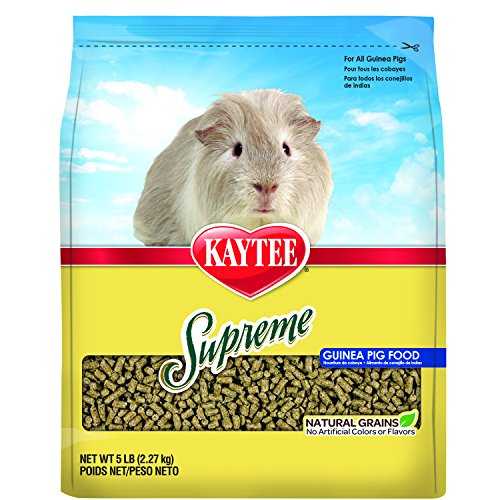 My Dog Ate Carpet Fibers: Supreme Guinea Pig Food, 5-lb Bag New