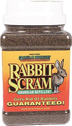 Repellent Scram Rabbit (Enviro Pro 11003 Rabbit Scram Repellent Granular Shaker Can, 2.5 Pounds)