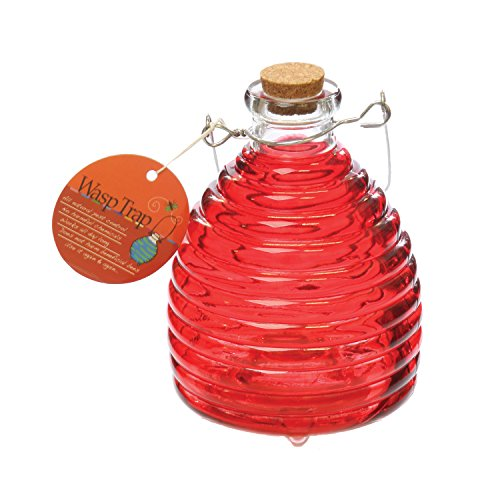 Reds Catchers (Toland Home Garden Large Tomato Red Pesticide-Free 5.5-Inch Diameter Glass Wasp and Fruit Fly Trap 10245)