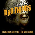 Bad Things Audiobook by Willow Cross Narrated by Abby Elvidge