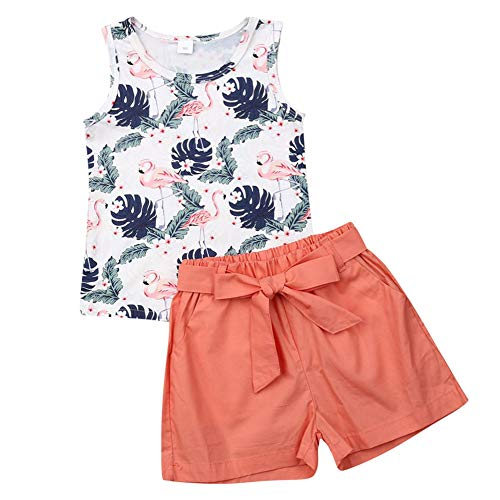 2Pcs/Set Fashion Toddler Kids Baby Girl Sleeveless T-Shirt Top+Floral Denim Shorts Outfits (Flamingo, 5-6 Years)
