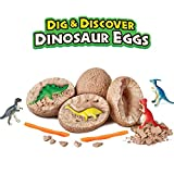 SRDX Dig it up Dinosaur Eggs.12 Dino Egg Toys.Best Science STEM Learning Kids Activity,Gift and Party Favors for Kids.A Dozen Mystery Excavation Adventure Discover Dinosaur Eggs.Birthday Party Supply